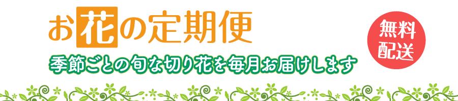 【お花の定期便】切り花を毎月お届け